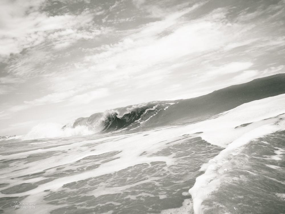 wave-0881